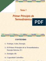 Tema 1-Primer Principio