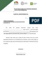 Carta Responsiva Intersecundarias 2013