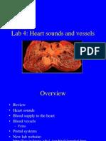 amali jantung 4