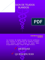 Lesion Tejidos Blandos