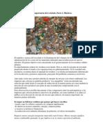 La Importancia Del Reciclado 2