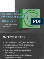 DISFUNCION NEUROPATICA DEL TACTO URINARIO INFERIOR.ppt