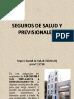 Tema n 15. Seguros de Salud y Previsionales