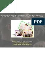 Praktikum PA Biomedik 3