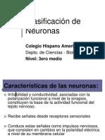 Clasif de Neuronas 3 2010