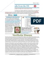 HTVEC Newsletter Vol6issue2