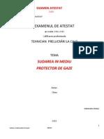 Sudarea in Mediu Protector de Gaze