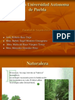 Estructuras de madera.ppt