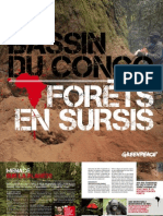 Bassin Du Congo Forets en Sursis