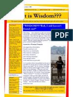 What is Wisdom 13