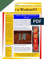 What is Wisdom 14
