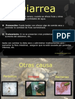 Diarrea en Reptiles_bejines