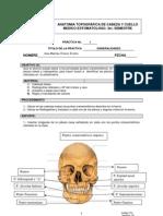 Practica.no.1.Cefalometria 1 (1)