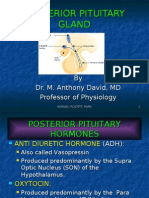 Nomad:Posterior Pituitary Physiology
