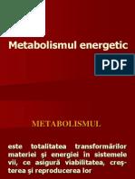 Bio Energetic A