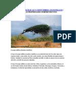 CIENCIAS MITOLÓGICAS Y COSTUMBRES ANCESTRALES.docx
