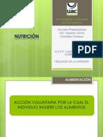 Ciclo Escolar 2012-2013 Fase 2