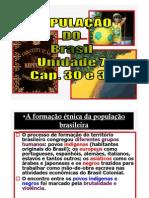 População do Brasil 2012