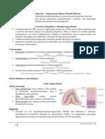 Fisio Endócrina - Supra-renais