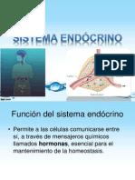 Sistema endócrino gral t1
