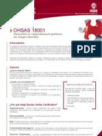 OHSAS_18001[1]