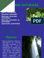 RECURSOS NATURALES 2013