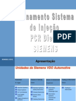 43686672 Treinamento as PCR 01