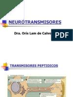 8. Neurotransmisores
