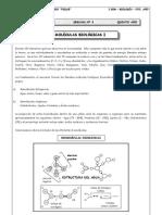 5to. Año - BIOLOGÍA - Guía 1 - Moléculas Biológicas