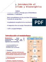 T16 Intro Bioenergetica