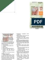 Leaflet Hernia Inguinal