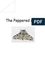 lesson 5 - activity the peppered moth