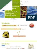 L'Effet de Contamination de Cadmium Gastropode