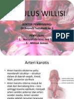 SIRKULUS WILLISI