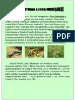 Parcul Natural Lunca Muresului