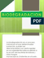 BIODEGRADACION Y BIORREMEDIACION.pptx