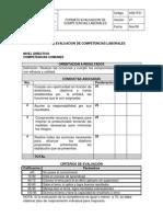Formatos Para Evaluar Las Competencias