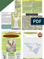 """Boletín Semanal """"El Conquistador"""" del 08 de Marzo del 2009"""