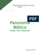 7251965 Apostila Panorama bIblico 2003