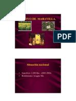 maravilla - CULTIVO_DE__MARAVILLA.pdf
