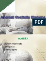 Kongenital Genitalia