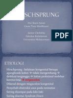 Hirschsprung Fix