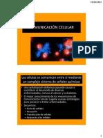 COMUNICACIÓN CELULAR.pdf