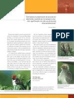 observacion aves (aop)