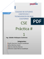 Practica 1 CSE.docx