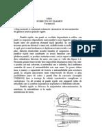 Varianta E.doc