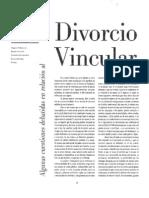 03_Divorcio_Vincular_AndreaMunoz