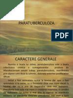 PARATUBERCULOZA