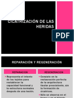 cicatrizacindelasheridas-120409145843-phpapp02