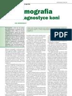 Termografia Koni